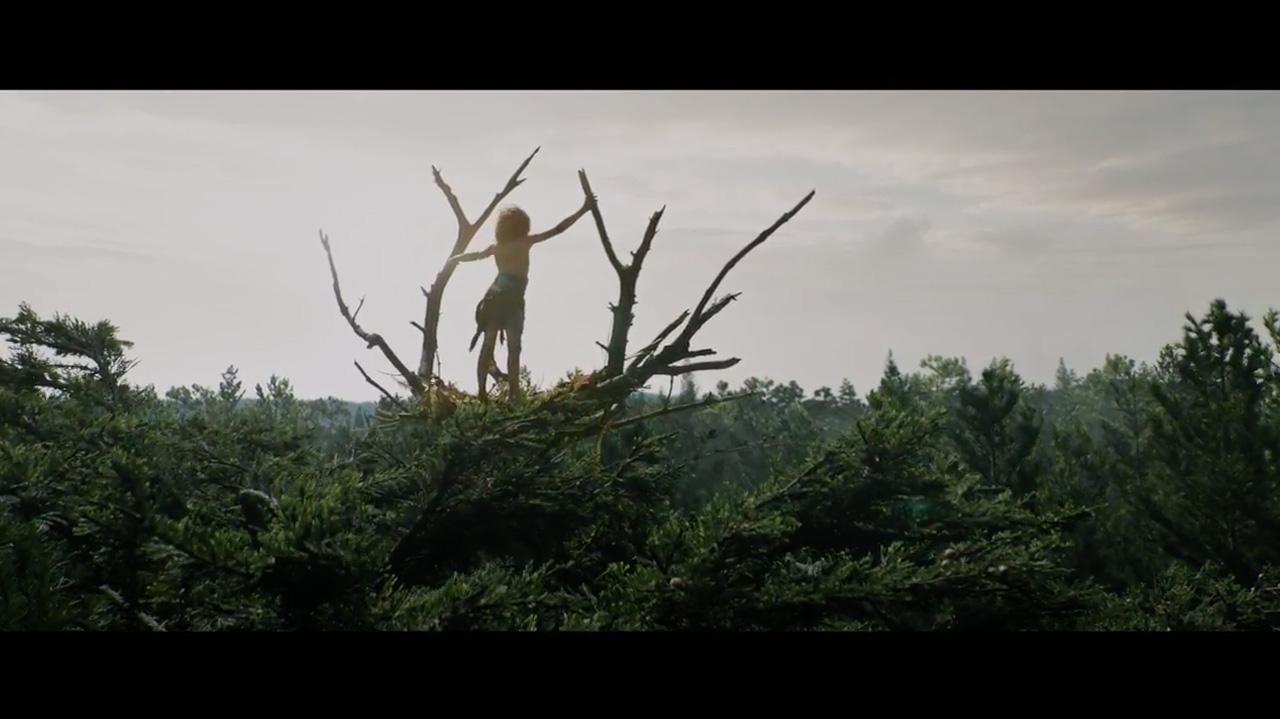 PETE'S DRAGON - The Art of VFXThe Art of VFX